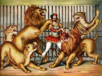 Lion tamer in cage with two lions, a lioness, and two tigers.  Chromolithograph, Gibson & Co. (Cincinnati, Ohio), published c. 1873 (Source: Wikimedia Commons)