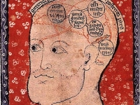 Diagram of the Brain, 14th Century