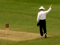 An umpire: Australia v World XI, Sydney Cricket Ground, 2005 (Source: Wikimedia Commons)