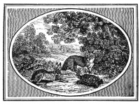 The Hare and the Tortoise, The Fables of Aesop, Thomas Bewick (1753-1828), Source: The Bewick Society