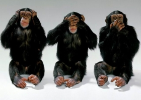 Three monkeys (Source: Wikimedia Commons)